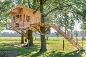 Baumhaus Gartenhaus 543698