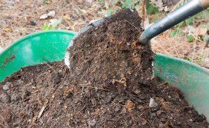 Kompost Schaufel 736474